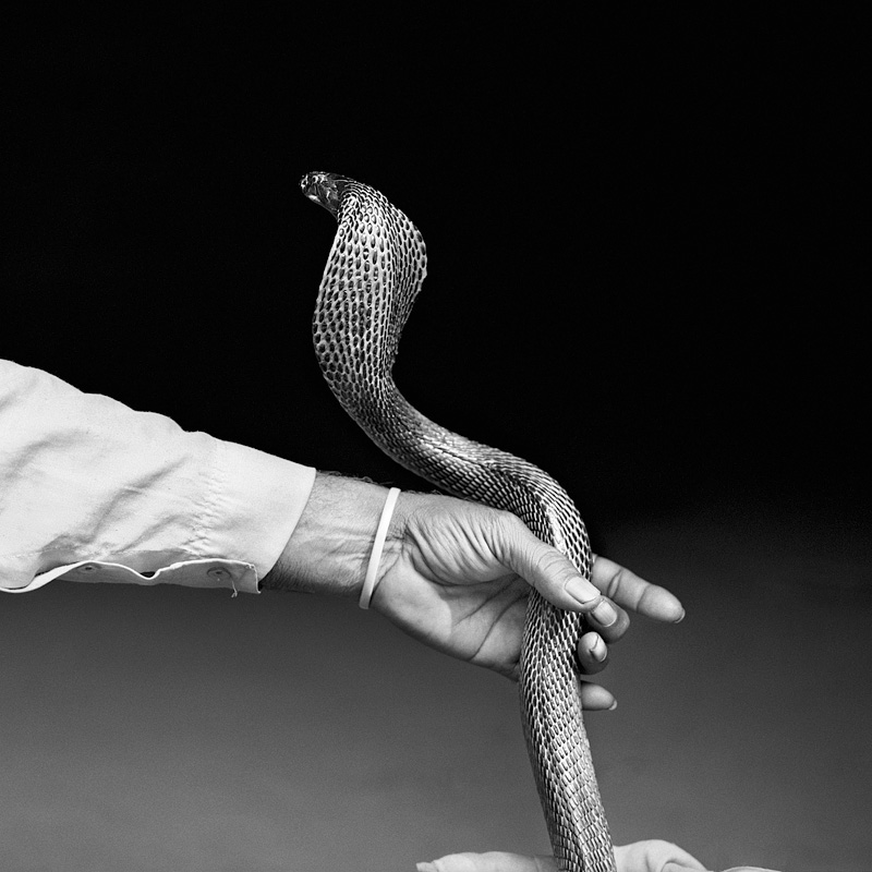 © Christine Turnauer – Snake charmer with cobra, India, 2015