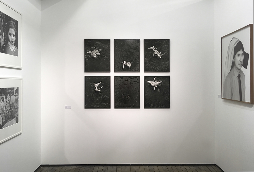 New York exhibition – Christine Turnauer, Loredana Nemes, 2017